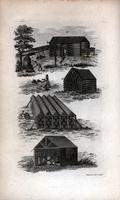 [Tobacco house] [graphic] / W. Newman del. sculp.
