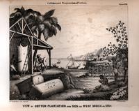 View of cotton plantation and gen [sic] in West Indies in 1764 [graphic] / F. Fuchs sc.