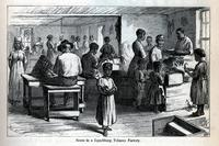 Scene in a Lynchburg tobacco factory [graphic] / W.L.S. ; DV.