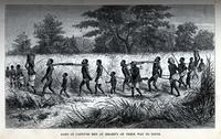 Gang of captives met at Mbame's on their way to Tette [graphic] / J.W. Whymper sc.