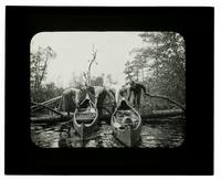 Canoeing on the Mullica River [graphic].