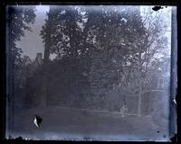 [Deshler-Morris House, 5442 Germantown Avenue] In our garden. Looking toward Carriage Road from flag path [graphic].