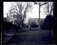 Lawn, [Deshler-Morris House] 4782 Main St. looking from elm tree down lawn [graphic].