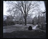 Looking up garden at home from end of stone path. [Deshler-Morris House, 5442 Germantown Avenue] [graphic].