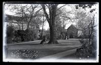 Elm tree in middle of our garden. Mother sitting under it. [Deshler-Morris House, 5442 Germantown Avenue] [graphic].
