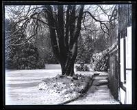 Snow-scene. Up garden from porch door, [Deshler-Morris House, 5442 Germantown Avenue] [graphic].