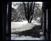 Back yard on snowy day from conservatory door, 5442 [Germantown Avenue, Deshler-Morris House] [graphic].