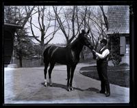 Strawbridge's horse, Genesta, [Germantown] [graphic].