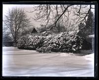 Snow scene in our garden, [Deshler-Morris House, 5442 Germantown Ave]. Ridge back of kitchen [graphic].