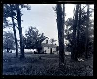 Cottage through pine trees at Allaire, [NJ] [graphic].