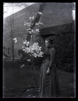 Bess standing by little magnolia tree near top of our yard, [Deshler-Morris House, Germantown] [graphic].