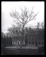 Photo of the old Buttonwood tree [planted by Samuel B. Morris] at Market Square, Germantown, Phila. [graphic].