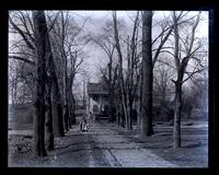 [Roberts Mansion] from farther down avenue] [graphic].