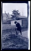 [Boy in garden, 131 W. Walnut Lane] [graphic].