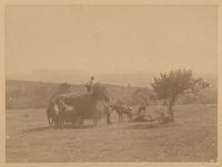 [Hay harvesting.] [graphic] / R.S. Redfield.