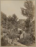 [Woman with bonnet in a garden] [graphic].