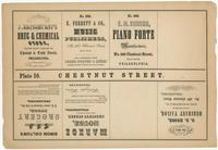 [Unnumbered plate and advertisements from Rae's Philadelphia pictorial directory & panoramic advertiser. Chestnut Street, from Second to Tenth Streets] [graphic].