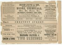 [Plate 3 and advertisements from Rae's Philadelphia pictorial directory & panoramic advertiser. Chestnut Street, from Second to Tenth Streets] [graphic].