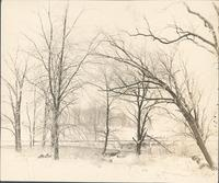 [Landscape in winter west of Frankford Elevated terminal at 69th and Market Streets, Philadelphia] [graphic].