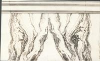 [Philadelphia City Hall, detail of marble in the Common Council Chamber] [graphic].