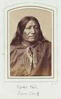 Spotted Tail, Sioux Chief, 1833-1881 [graphic].