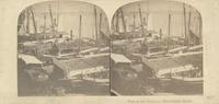 View on the Delaware, Philadelphia harbor. [graphic] / Langenheim.