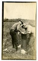 Two men working in a field, Egg Harbor River, NJ