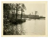 View of the river, Browns Mills NJ with Photographic Society