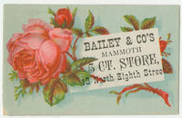 Bailey & Co.'s mammoth 5 ct. store, 13 North Eighth Street.