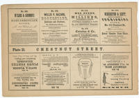 [Plate 11 and advertisements from Rae's Philadelphia pictorial directory & panoramic advertiser. Chestnut Street, from Second to Tenth Streets]