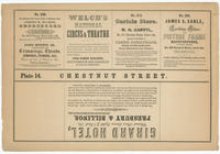 [Plate 14 and advertisements from Rae's Philadelphia pictorial directory & panoramic advertiser. Chestnut Street, from Second to Tenth Streets]