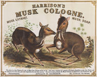 Harrison's Musk Cologne. Musk extract. Musk soap. Apollos W. Harrison, Philadelphia, No. 10 South 7th Street.