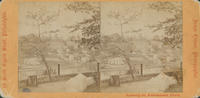 [West bank of the Schuylkill River from Laurel Hill Cemetery, Philadelphia]